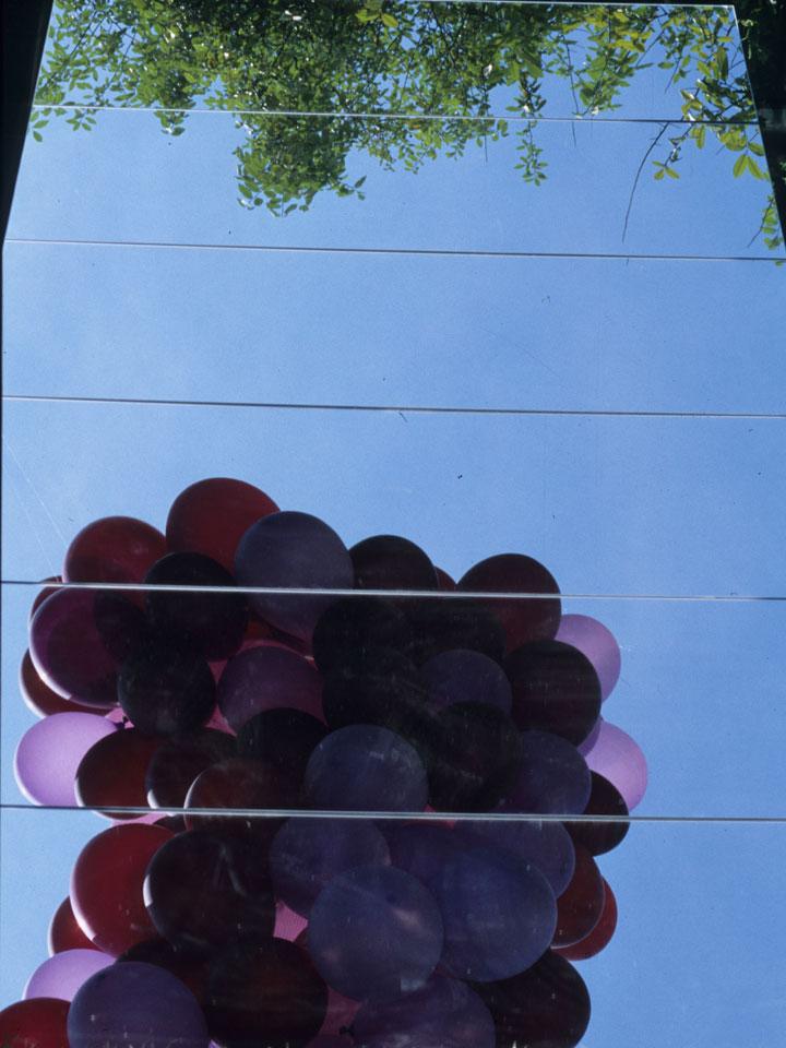 2.2004, il grappolo di-vino, orticola milano