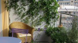 1.2012, terrazzo-balcone a milano